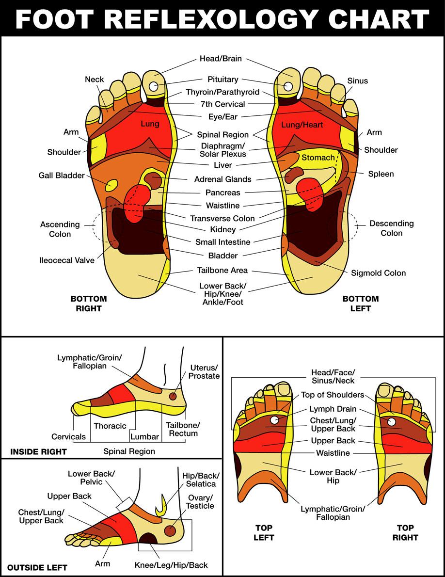 chart11 Massage Services